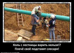 nqw7hlnxpu0